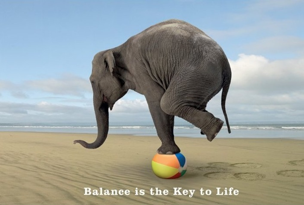 balance-is-the-key-to-life-i2899